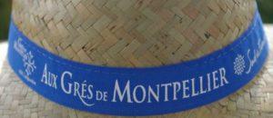 VIGNOBLES DU SUD GRES DE MONTPELLIER BALADE 1